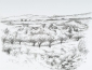 Landschap Provence. tekening O.I. inkt 50x65 cm.